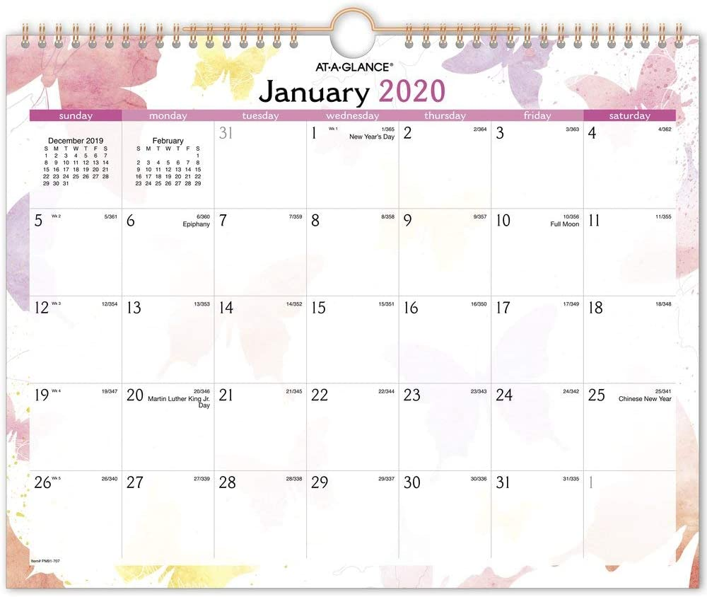 "AT-A-GLANCE 2020 Wall Calendar, 15"" x 12"", Medium, Wirebound, Watercolors (PM91-707)"