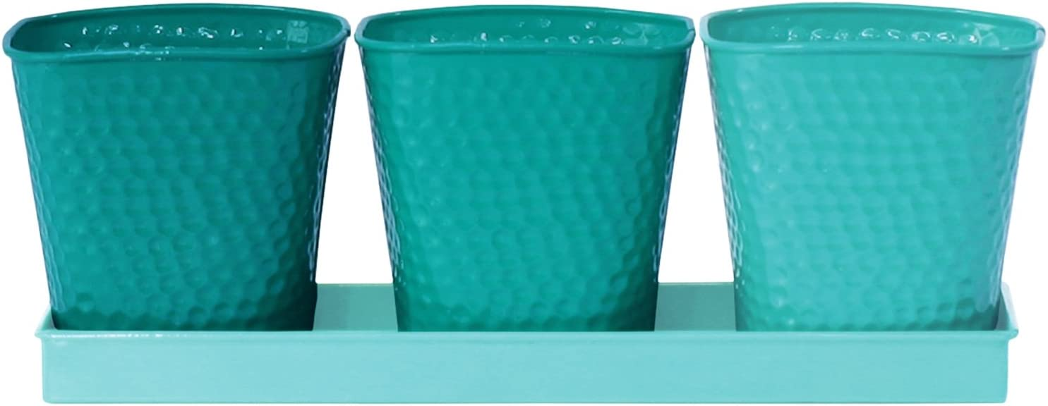 Robert Allen Selby Series Herb Garden Planter Pot Set, 4 Piece Set, 3 Pots and 1 Tray, Vivid Bluemoon Colors