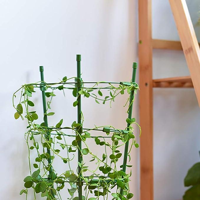 STSERI Jaulas de Soporte de Plantas Jaulas de Plantas con 3 ...