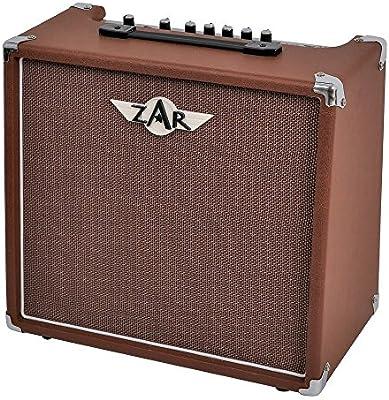Zar A-40R - Amplificador para guitarra acústica: Amazon.es ...