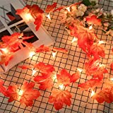 Mynse 2 Pieces 13 ft LED Light String 40 LED for Thanksgiving Christmas Outdoor Decorations Battery Powered Artificial Maple Leaf Light Strings