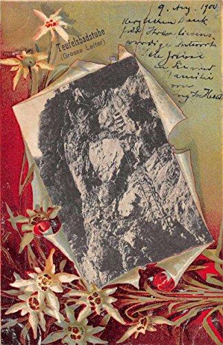 - Teufelsbadstube Germany Cliffs and Ladder Flower Border Antique Postcard J59734