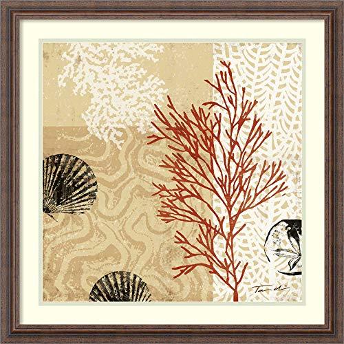 (Framed Wall Art Print Coral Impressions II by Tandi Venter 26.50 x 26.50 )