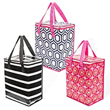 Planet E Grocery Cooler bag Pack of 3