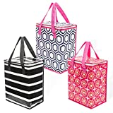 Planet E Grocery Cooler bag Pack of 3 - Best Reviews Guide