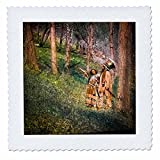 3D Rose Magic Lantern Native Americans in the Woods Vintage Quilt Square 12 by 12 Inch, 12 x 12''