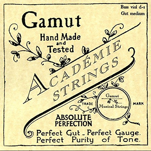Bass Viol d-1 Gut Medium (Viola Da Gamba Strings)