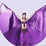 Pink Lizard 360 Degree Belly Dance Wing Fan Indian Dance Wings with Stick Dance Performance Acessaries
