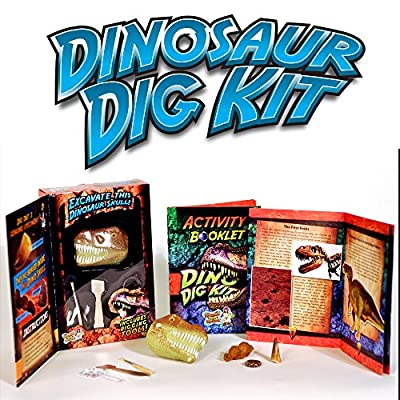 Dinosaur Dig Science Kit – Dig Up and Collect 3 Real Dinosaur Fossils!: Toys & Games