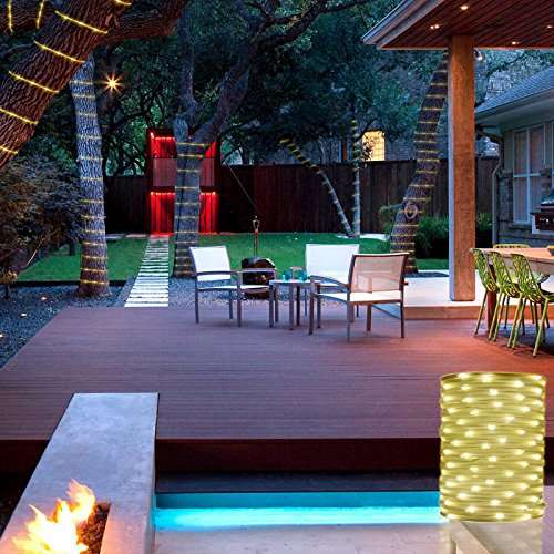 Christmas LED Rope Lights, RF Remote Control, 8 Flash Modes, IP65 Waterproof Strip Lights, Indoor Outdoor Dimmable Tube Lights for Patio, Wedding, Holiday, Xmas, Party(Warm White), 10M/33Ft 136 LEDs -