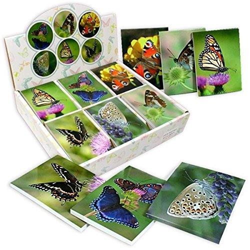 48Stk Großpack Schmetterlings-Notizblöcke