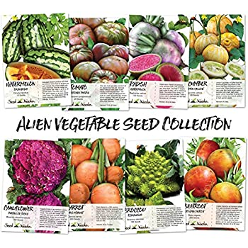 High Quality Alien Vegetable Seed Assortment (8 Individual Seed Packets) Seeds By Seed  Needs