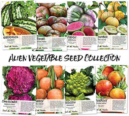 Alien Vegetable Seed Collection (8 Individual Seed Packets) Non-GMO Seeds by Seed Needs