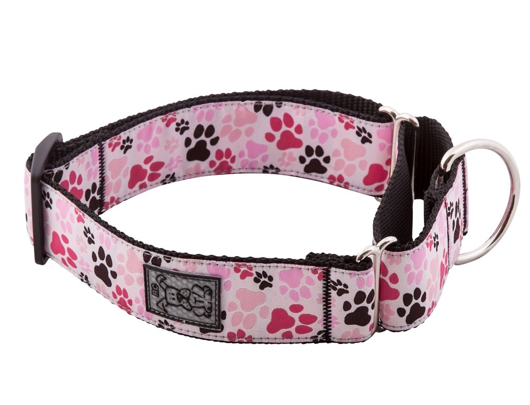 RC Pet Products 1-1/2-Inch All Webbing Martingale Dog Collar, Medium, Pitter Patter Pink