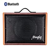 Mugig Guitar Amplifer - Rechargeable Speaker Works with Guitar (Acoustic and Electric), Voice, Karaoke (25W)