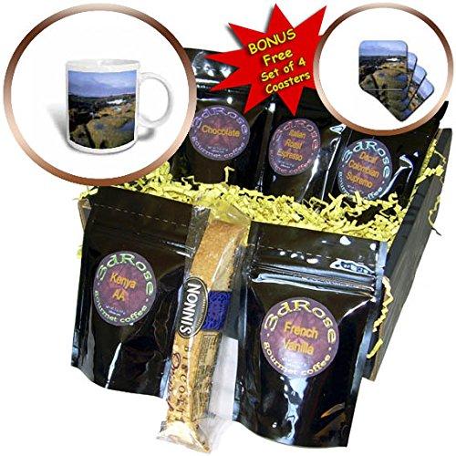 3dRose Danita Delimont - Beaches - Botany Bay, Juan de Fuca Provincial Park, Vancouver Island, Canada - Coffee Gift Baskets - Coffee Gift Basket (cgb_257489_1) (Gourmet Gift Baskets Vancouver)