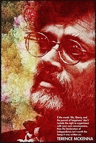 Terence Mckenna Quote Poster
