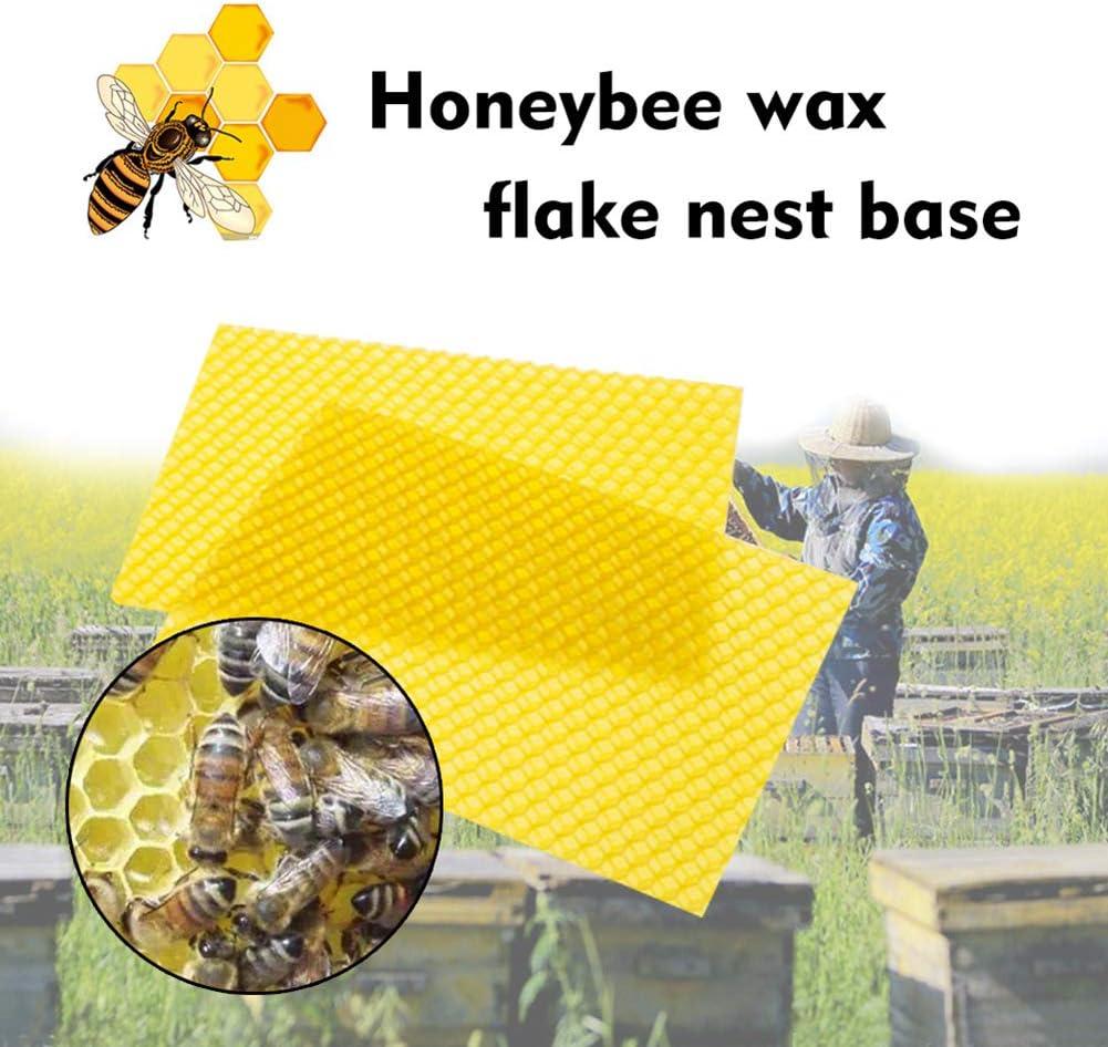Set of 10 Bongba Bee Comb Honey Frame Beekeeping Nest Box Beeswax Foundation Beehive Wax Frames Base Sheets Beekeeping Raising Tools
