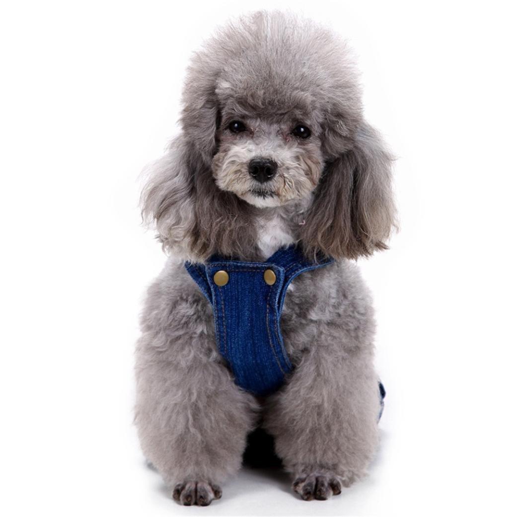 Amazon.com: ooeoo perro ropa, azul Jeans overol de baberos ...