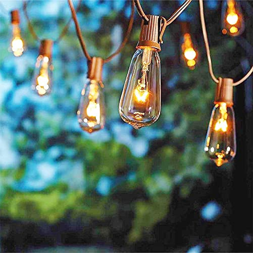 Monkeydg 20FT ST40 Outdoor Patio Edison String Lights with 22 Clear Bulbs -7 Watt 120 Voltage E17 Base -Brown Wire