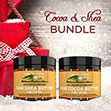 Cocoa Butter And Shea Butter - Body Butters Bundle