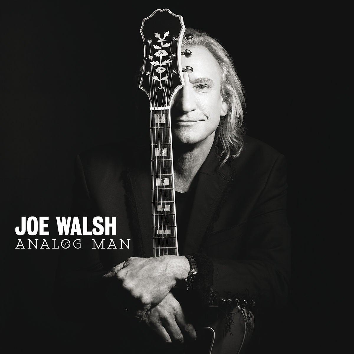 Joe Walsh Analog Man Amazon Com Music You know, there's a philosopher who says, as. analog man