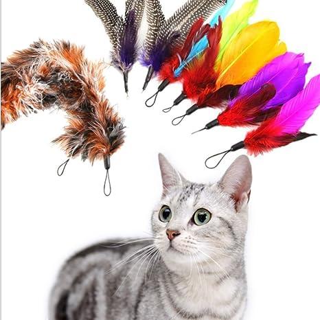 Jumbo Sky Juguetes para gatos Pluma, plumas múltiples Teaser y ejercitador para gato y gatito