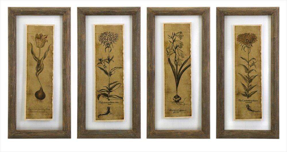IMAX 27523-4 Cassander Double Glass Print Wall Art, Set of 4