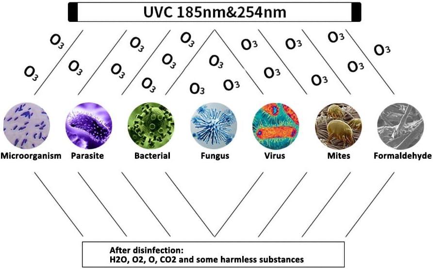 Antibakteriell Rate 99/% Energieklasse A+ azfdxgfc Gl/ühbirne UV Ozon Lampe UV-C Lampe 6W f/ür Haus Schr/änke Schuhschr/änke Luftreiniger Reiniger Desinfektion Bakterien