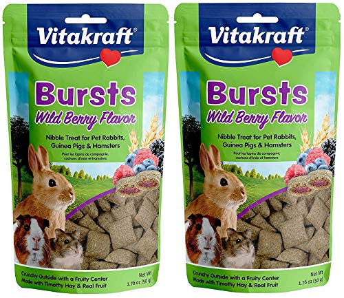 Vitakraft 2 Pack of Bursts Treats, 1.76 Ounces Each, Wild Berry Flavor, for Pet Rabbits Guinea Pigs and Hamsters