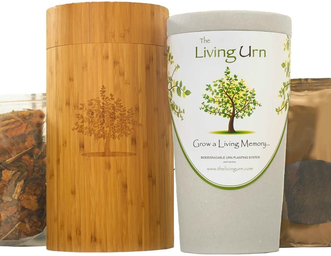 La vida urna urna de Bio y sistema de plantación para personas ...