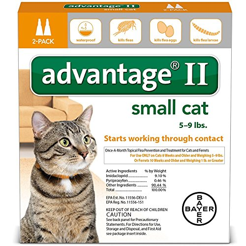 advantage ii cats small - 6