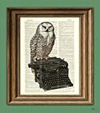 Best Gifts For Writers - The Writer's Muse Owl on a Typewriter print Review