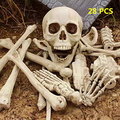 Bag Of Bones Halloween Props (Halloween Skeleton Bones Decoration, Spookiest Graveyard Humans Skull Spooky Scene)