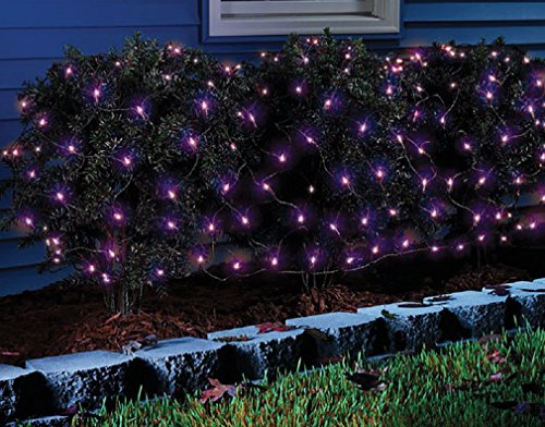 Celebrations 34116-71 Led Net Halloween Lights, 100 Count]()
