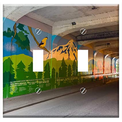 Switch Plate Double Toggle Tunnel Wall Painting Seattle Urban