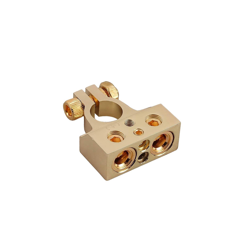 ESYNiC 2pz Morsetti Batteria Auto in Metallo con Coperchio Protettivo per Sezione Cavi con Perni Fissaggio Paio Connettori Terminali Positivi e Negativi con 4 Uscite 4//8 AWG per Batteria Auto Oro