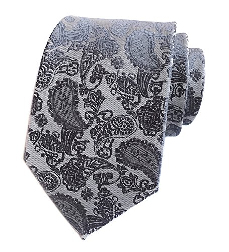 Elfeves Men's Paisley Ties Jacquard Woven Silk Luxury Formal Party Suit Necktie