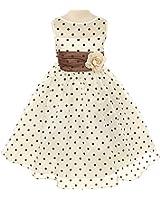 Kids Dream Girls Organza Polka Dot Special Occasion Dress