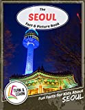 The Seoul Fact and Picture Book: Fun Facts for Kids About Seoul (Turn and Learn)