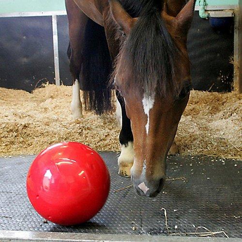 Manna Pro Likit Snak-a-Ball, Red by Manna Pro