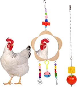 QBLEEV 2 Pack Chicken Hanging Feeder and Mirror Toys,Stainless Steel Chain Toy Fruit Vegetable Holder for Hens Cocks,Large Bird Food Skewer Wood Mirror Toy with Bells for Caique Parrot Macaw