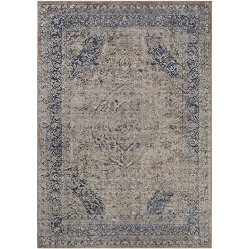 Castilla Beige and Khaki Updated Traditional Area Rug 6'7