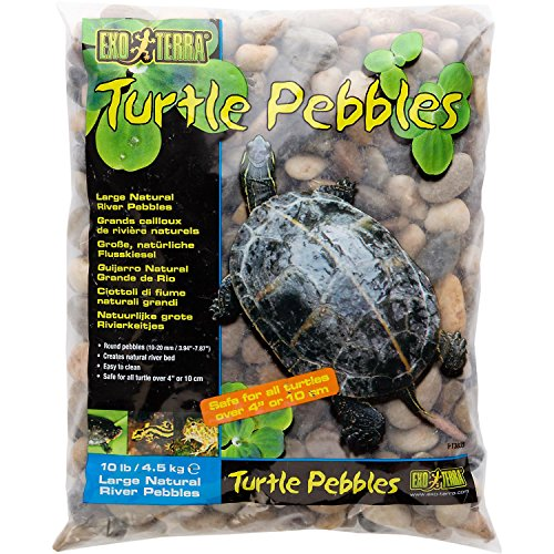 Exo Terra Turtle Pebbles