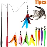 MeoHui 11PCS Retractable Cat Feather Toy Set, Interactive Cat Toys Wand with 2 Poles & 9 Attachments Worm Bird Feathers…