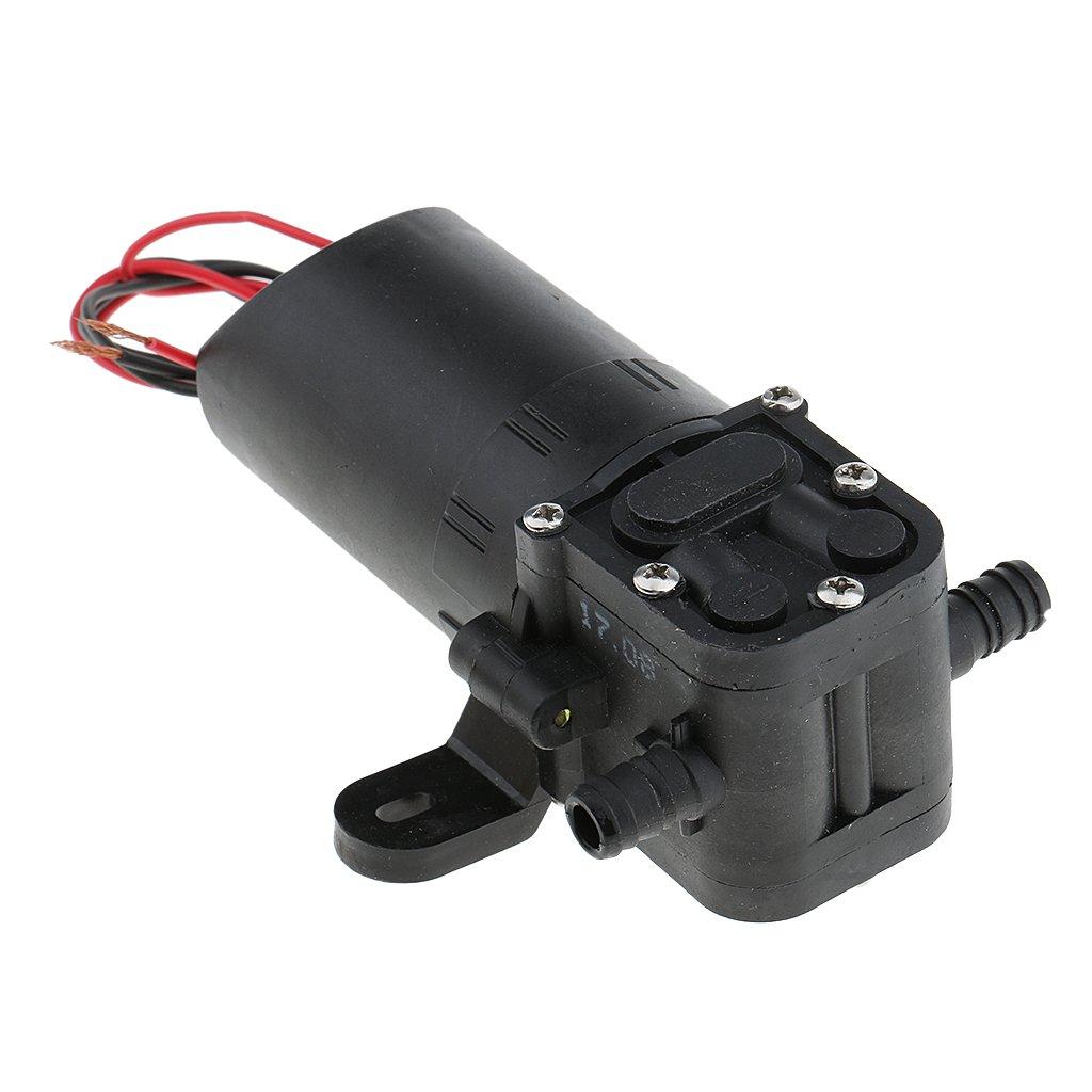 Sharplace Bomba de Agua de Diafragma 12V 36W 3,5L/min de Tipo Recto 2 Lados para Coche Barco