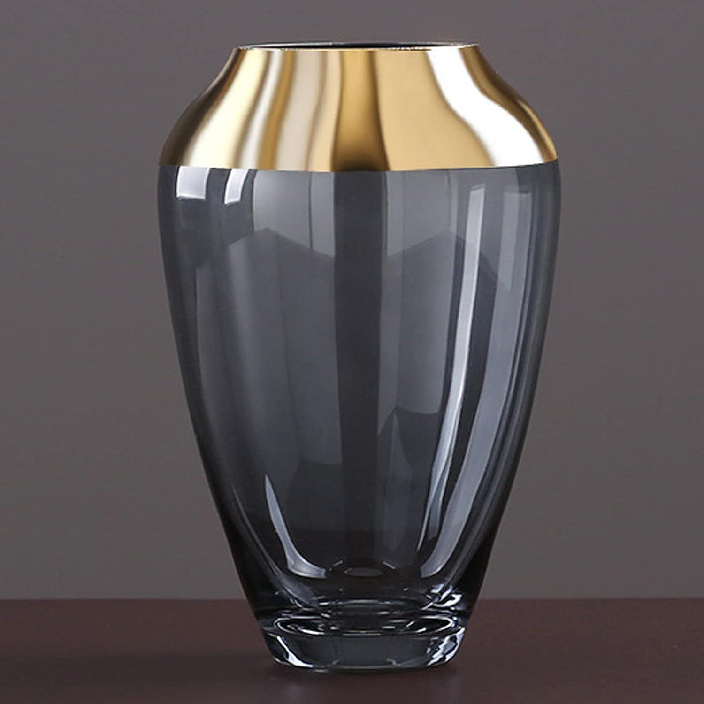 Tauzveok Jarrón De Cristal Transparente De La Botella De La Botella De La Botella De Chapado En Oro, Estilo Moderno De Instrucciones De La Planta,Azul,13 * 20CM