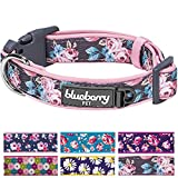 "Blueberry Pet 6 Patterns Soft & Comfy Welcoming Spring Rose Flower Prints Girly Padded Dog Collar, Medium, Neck 14.5""-20"", Adjustable Collars for Dogs"
