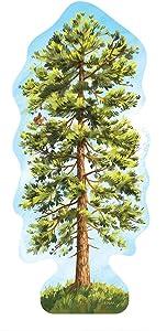 "Ponderosa Pine Evergreen Tree Forest Sticker, Mountain Tough Outdoor Stickers, Waterproof Vinyl (4.5"" Tall)."