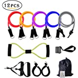 Resistance Bands Set with Door Anchor,Bial 12 PCS Exercise Bands Includes Exercise Chart with Carrying Bag Perfect for any Home Fitness Training - Workout Abs, Arms, Legs and Back